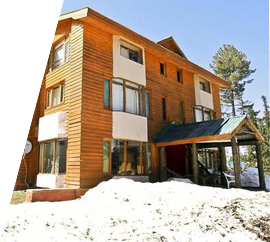 hotel-pine-palace